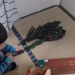 クリスマスツリーを箱から出した。